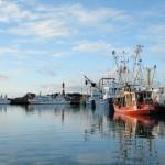 Hafen Hoernum