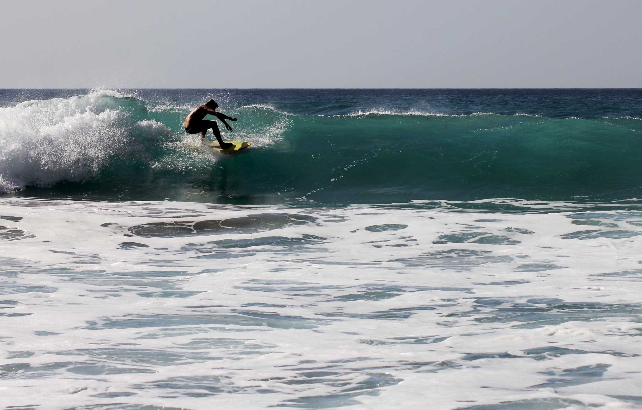 Surfcamp Nordsee Wellenreiten